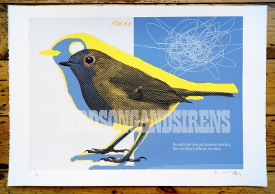 ''Robin MMXX'' limited edition screenprint by Richard Pendry